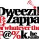 dweezil zappa 50 yrs of frank tour nightmair creative
