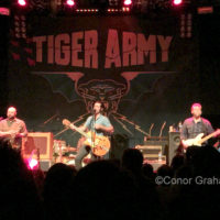 Tiger army conor graham nightmair creative 1