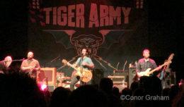 Tiger army conor graham nightmair creative 1