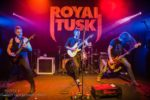 Royal Tusk red lenses photography nightmair creative